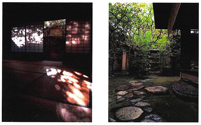 木漏れ日が映り込む部屋