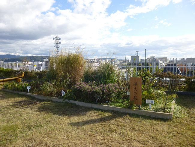 源氏の庭:源氏物語に登場する草花を植栽