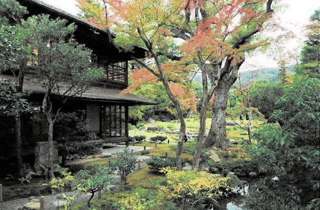 母屋と庭園:紅葉が色づき始めている